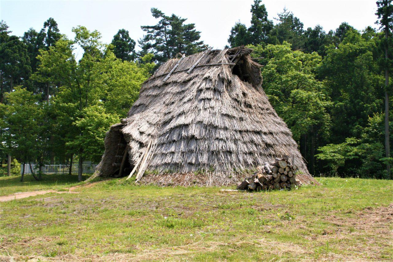Restored Pit Dwelling