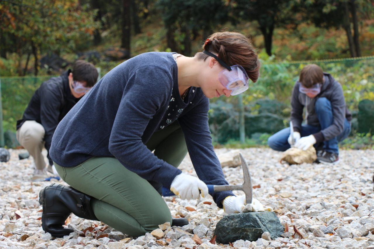 Discover History at Fossil Valley