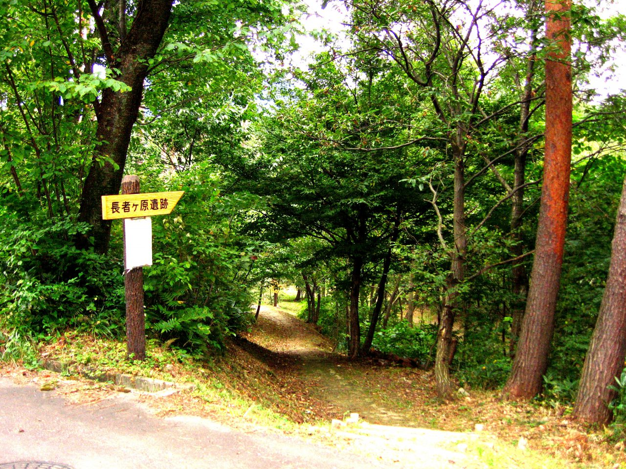 Forested Entrance to the Chojagahara Archaeological Park