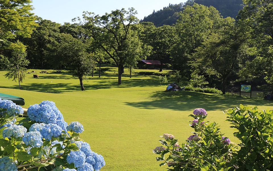 Takanami Campgrounds
